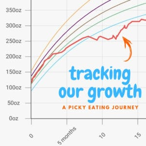 Our Baby's Weight Gain – Tracking the Growth Chart Progress