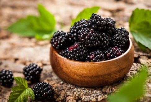 low sugar fruit - blackberries