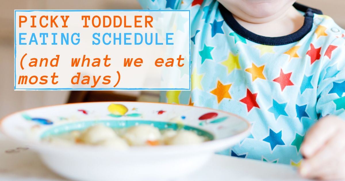 picky toddler eating schedule graphic