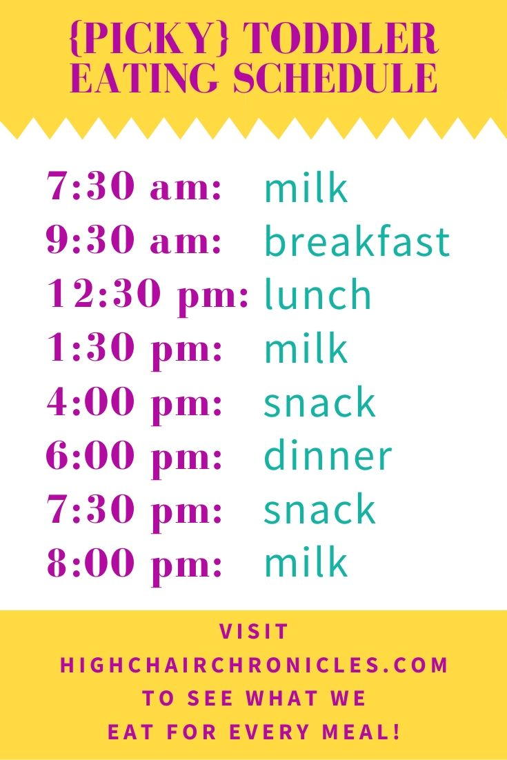 picky toddler eating schedule