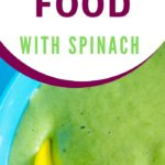 homemade baby food with spinach graphic
