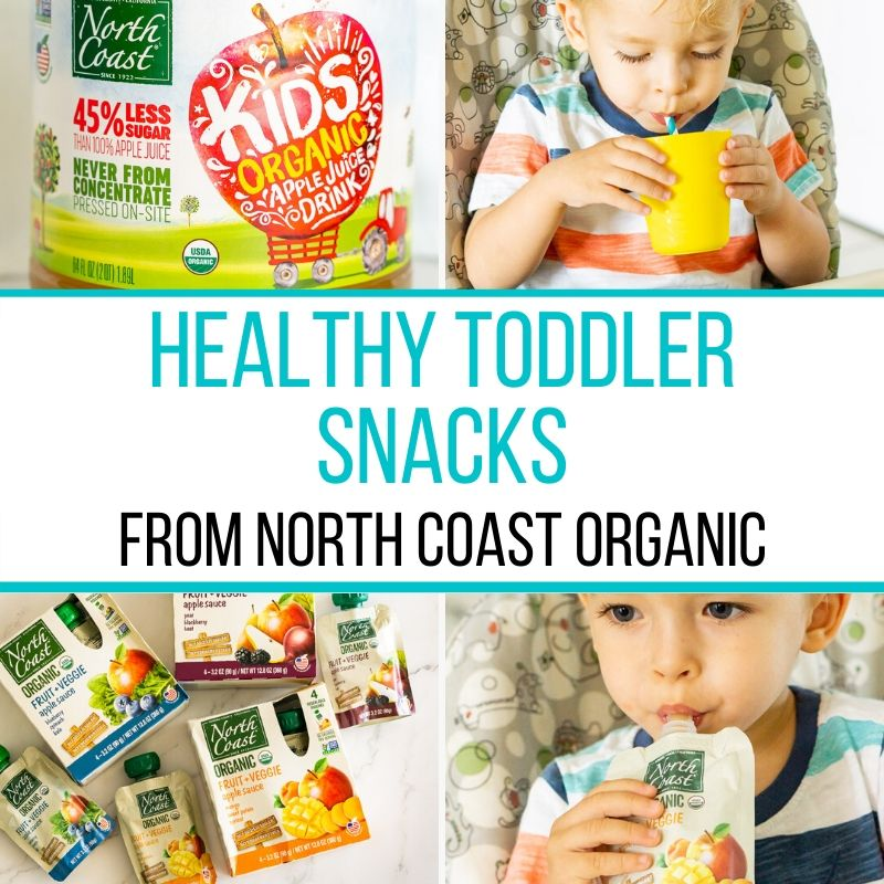 healthy toddler snack graphic