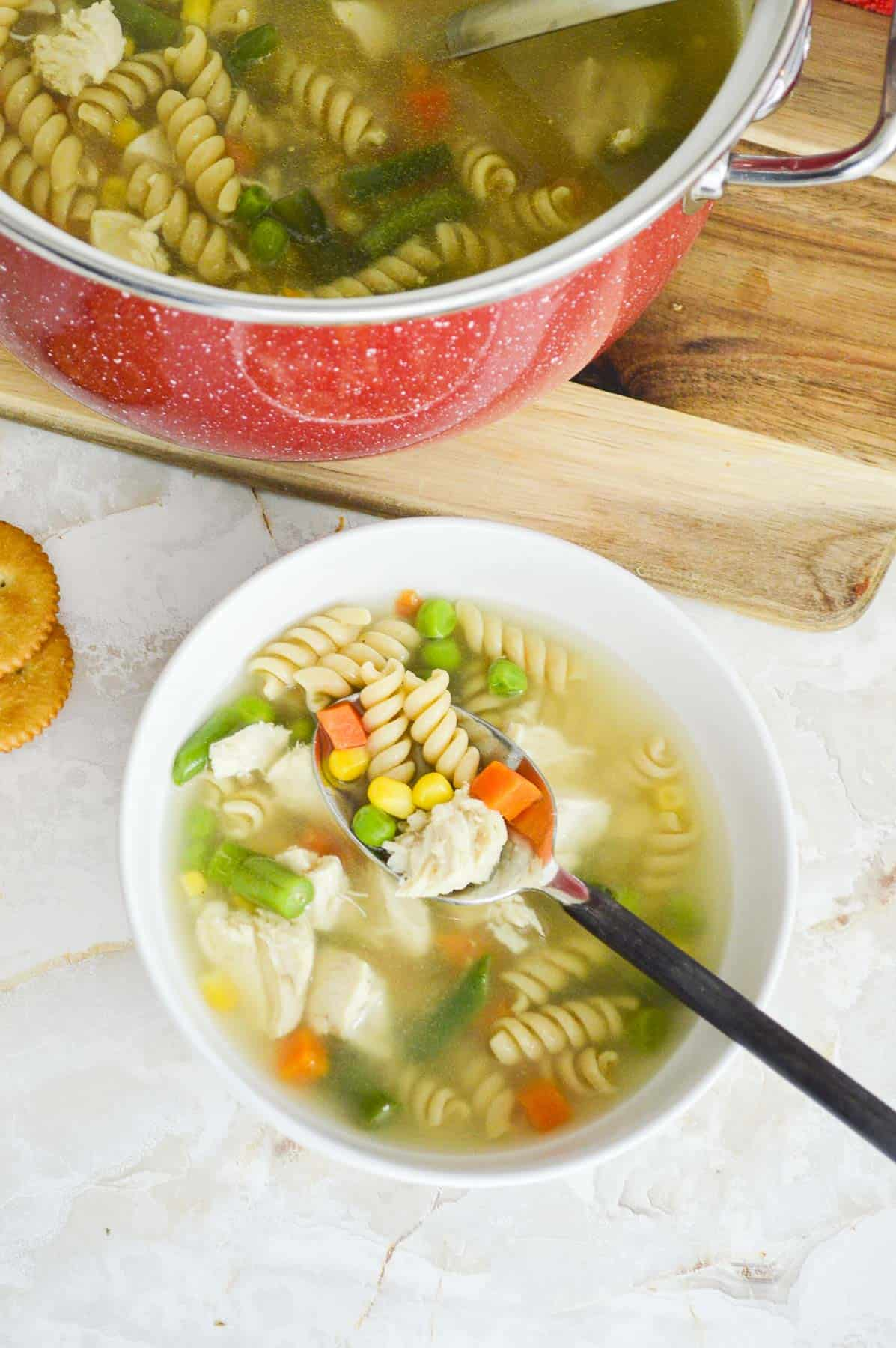 bowl and pot of whole wheat chicken noodle soup