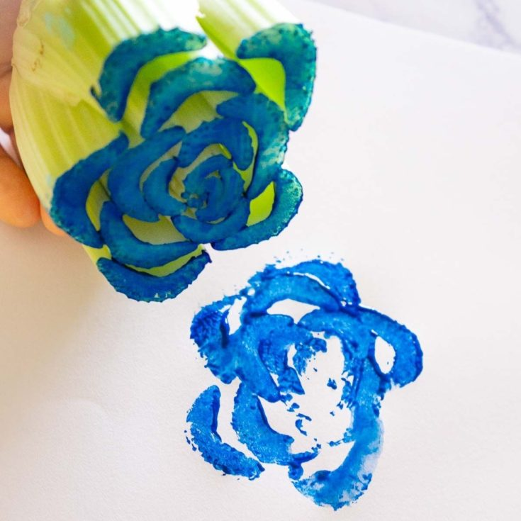 Using celery to stamp flowers for a toddler sensory activity.